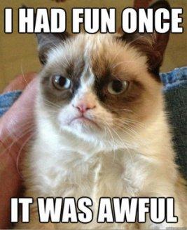 Grumpy-Cat-Fun-Meme