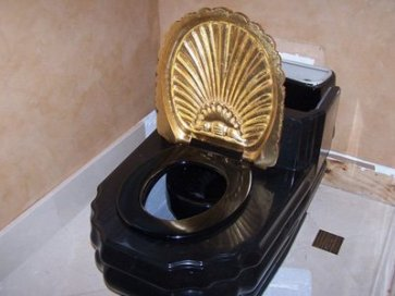 rothstein-toilet-golden-throne